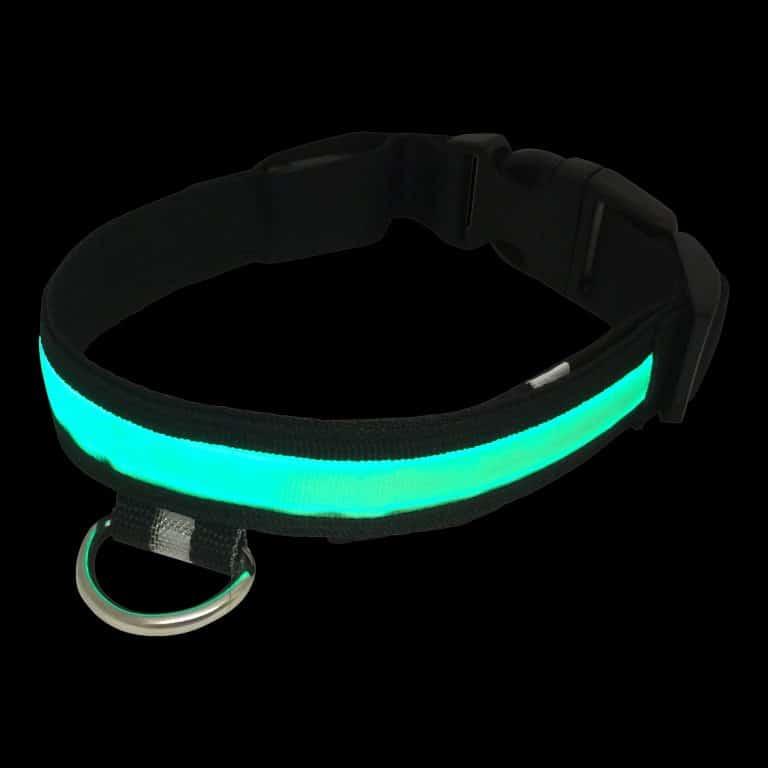 Glowing Light Up Green Dog Collar